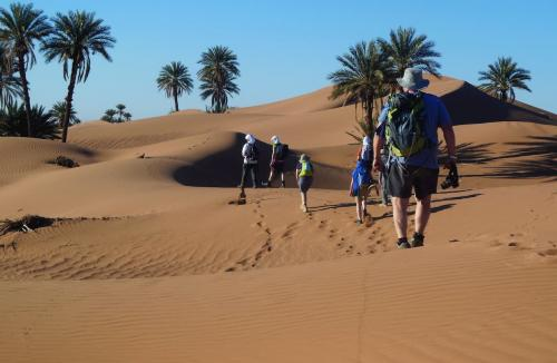 Group of people walking in the Moroccan Sahara